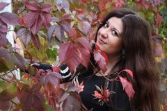 Donkerbruin meisje en gouden bladeren Stock Afbeelding
