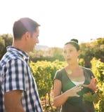 Donkerbruine en knappe mens die in de wijngaarden spreken Royalty-vrije Stock Foto's