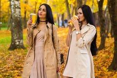 Donkerbruine meisjes die het park van de koffieherfst drinken Royalty-vrije Stock Fotografie