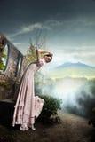 Donkerbruine schoonheid Stock Fotografie