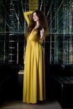 Donkerbruine vrouw in lange kleding - het binnenland van de nachtclub Royalty-vrije Stock Afbeeldingen