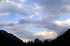 Donkere bos en hemel in de avond bij zonsondergang Stock Afbeeldingen