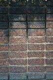 Donkere bruine laterite steenmuur Stock Afbeeldingen