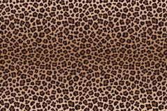 Donkere bruine luipaard bevlekte bonttextuur Vector vector illustratie