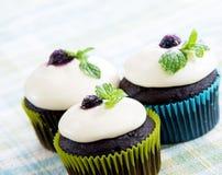 Donkere chocolade cupcakes Royalty-vrije Stock Fotografie