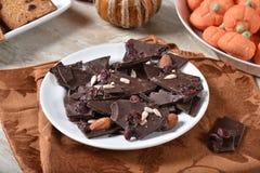 Donkere chocolade en Amerikaanse veenbesschors stock afbeelding