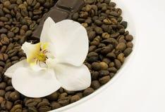 Donkere chocolade en bloem Stock Foto's