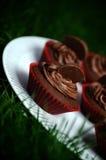 Donkere Chocolade Oranje Cupcakes Stock Afbeeldingen