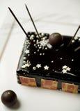 Donkere chocolade torte met hand-ondergedompelde truffels Stock Foto's