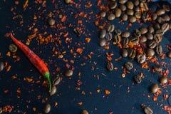 Donkere Creatieve Lay-out met Kruiden stock afbeelding