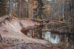 Donkere de Herfstzonsondergang op de banken van een rivier stock afbeelding