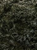 Donkere de textuurachtergrond van het tapijtbont stock foto