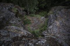 Donkere die keien in mos, het oriëntatiepunt van de Duivelsstoel in Karelië, Russua worden behandeld royalty-vrije stock foto's