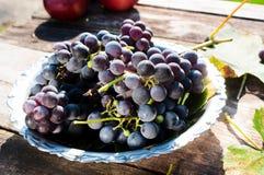 Donkere druiven Royalty-vrije Stock Foto