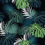 Donkere en heldere tropische bladeren met wildernisinstallaties Naadloos vector tropisch patroon met groene palm en monstera stock afbeeldingen