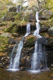 Donkere Holle Dalingen van Nationaal park Shenandoah Stock Foto