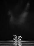 Donkere kamer het geheim-dansdrama de legende van de Condorhelden stock afbeelding
