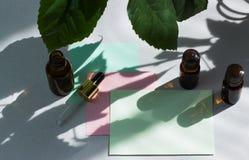 Donkere kosmetische flessen en groene natuurlijke bladeren op een lichte achtergrond Groene lege kaart, blad voor het schrijven L stock fotografie