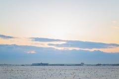 Donkere mooie hemel De Zon van de zonsondergang Snel drijvende wolken echte de winter ijzige zonsondergang op het gebied silhouet Stock Foto's
