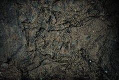 Donkere muurtextuur Stock Foto