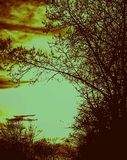Donkere Nacht Stock Foto