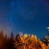 Donkere nachthemel boven de herfstbos Royalty-vrije Stock Fotografie