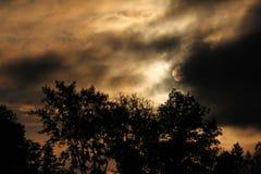 Donkere ochtendhemel Royalty-vrije Stock Foto's