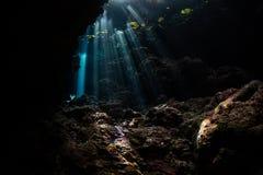 Donkere, Onderwatergrot en Stralen van Zonlicht Stock Foto