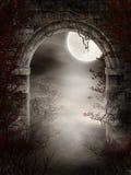Donkere ruïnes met doornen Stock Foto