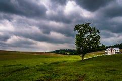 Donkere stormachtige hemel over bomen en een huis in de Provincie van York Stock Foto's