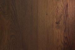 Donkere textuur van boom van de eiken boom met backlit bovenkant voor des Stock Fotografie