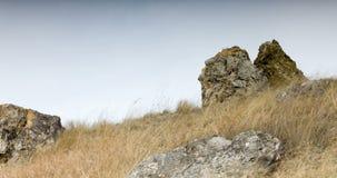 Donkere timelapse Bevend gras dichtbij stenen stock footage