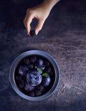 Donkere voedselfoto met braambes en pruimen stock foto