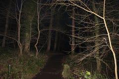 Donkere Weg Stock Fotografie