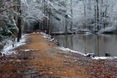 Donkere Windende Weg Stock Fotografie