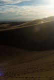 Donkere Woestijn royalty-vrije stock foto's