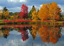 Donkere wolken en de Bezinningen van de Herfst Stock Fotografie