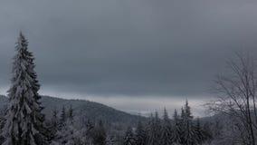 Donkere wolken op de winterhemel met sneeuw op bosbomen
