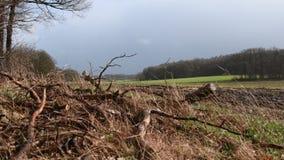 Donkere wolken op een stormachtige Zaterdag in het begin van Maart stock videobeelden