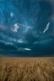 Donkere wolken over gebied Royalty-vrije Stock Fotografie