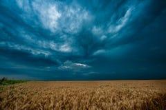 Donkere wolken over gebied Royalty-vrije Stock Foto