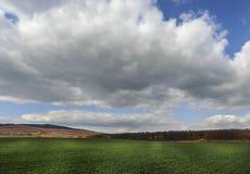Donkere wolken over het gebied en de bomen Hemel en gebied in de lente Royalty-vrije Stock Afbeelding