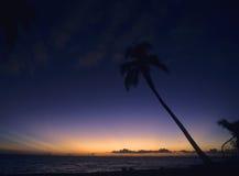 Donkere zonsondergang Bayahibe - Dominicaanse republiek Royalty-vrije Stock Fotografie