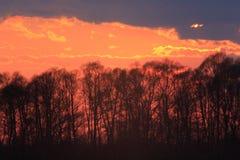 Donkere zonsondergang met karmozijnrode wolken Royalty-vrije Stock Fotografie