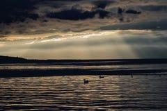 Donkere zonsondergang op het water Stock Foto