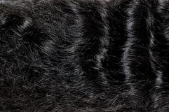 Donkere zwarte haartextuur Royalty-vrije Stock Afbeelding