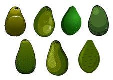 Donkergroene geïsoleerde avocadovruchten Stock Afbeelding