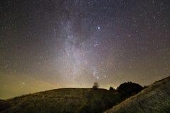 Donkergroene grasrijke heuvels, eenzame boom en struiken bij nacht onder mooie donkerblauwe de zomer sterrige hemel Nachtfotograf stock foto's