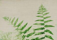 Donkergroene varen op lichtgrijze textuur Stock Afbeeldingen