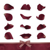 Donkerrode rozenbloemblaadjes Stock Afbeelding